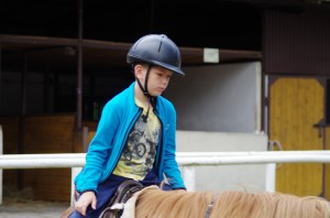 dz 4 konie 4
