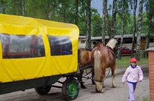 wóz konny 4
