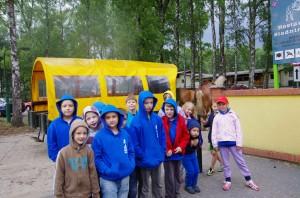 wóz konny 5