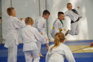 Lato 2017 2 dz judo 3